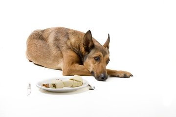 Hypoallergene voeding en snacks